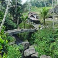 Gunung kawi Temple _ Bali