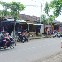 Traditional farming village of Pejeng _ Bali