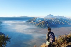 Bromo vegan travel6