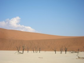 Dead Valley Deadvlei. Namibia