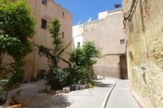 Fez travel13