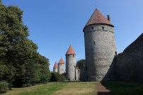 walls towers