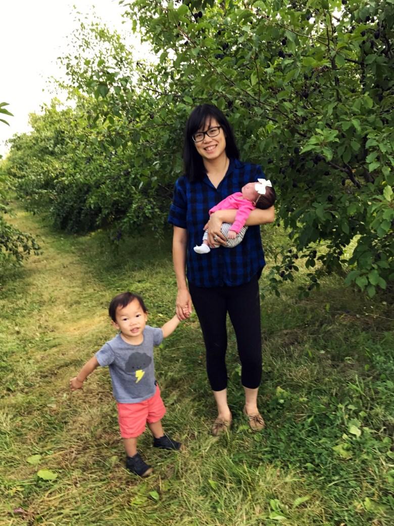 apple farm trip