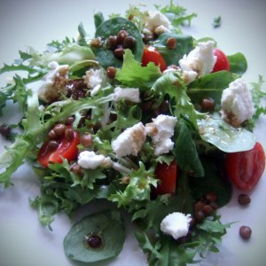 Green salad with lentil and goat cheese