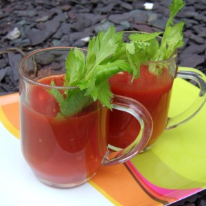 Bloody Mary Soup