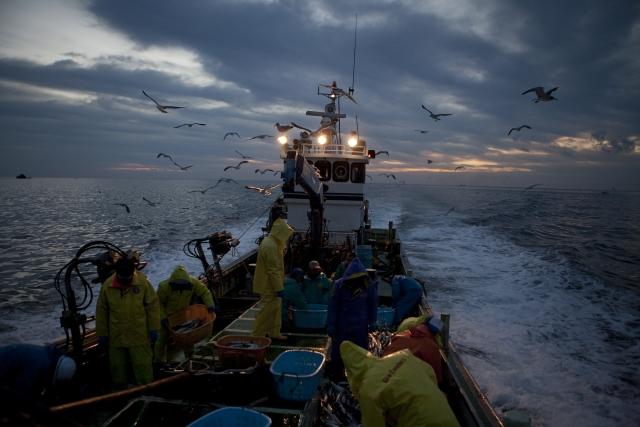 カニ漁,漁,漁船