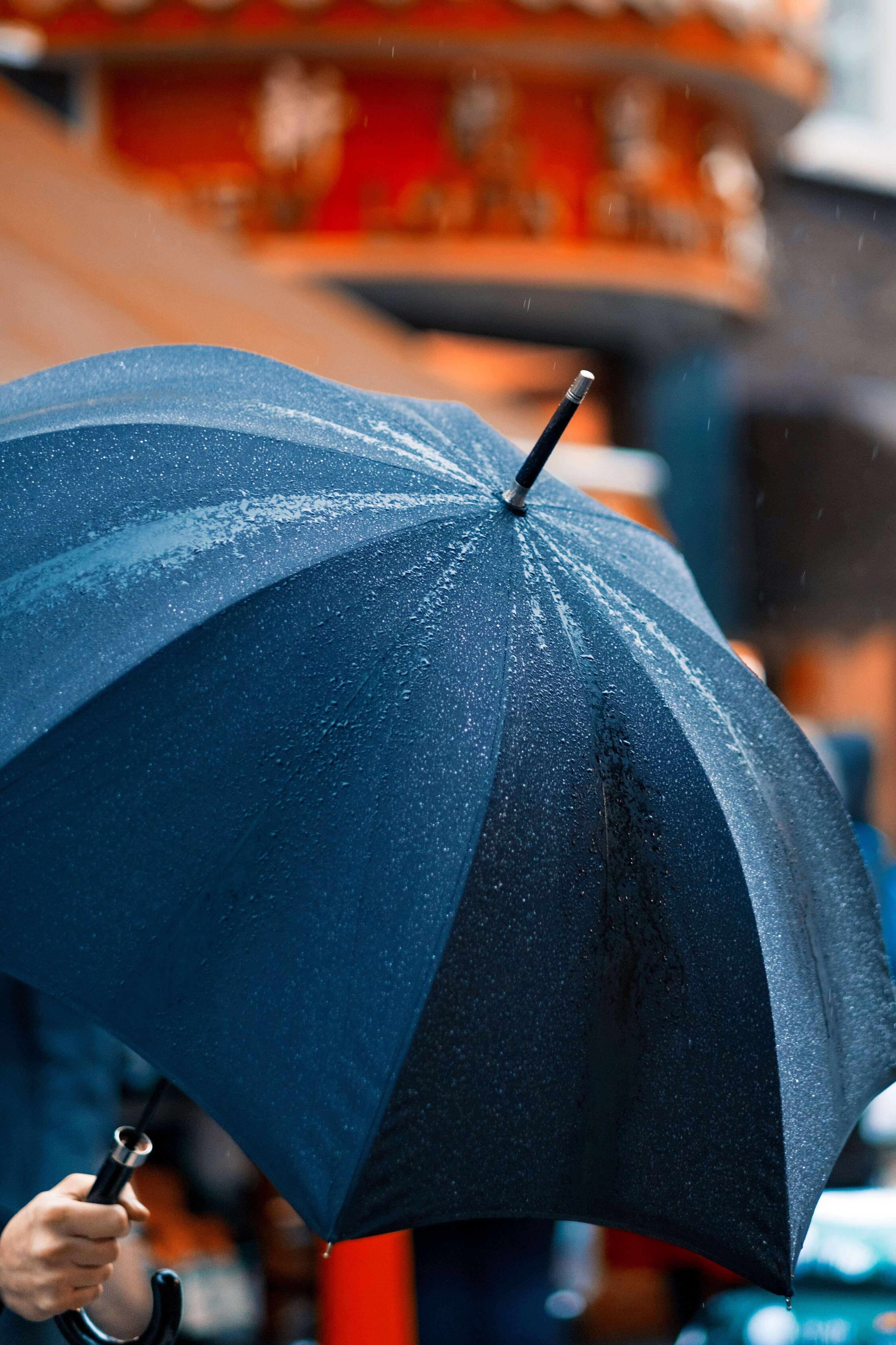 傘,雨,濡れる
