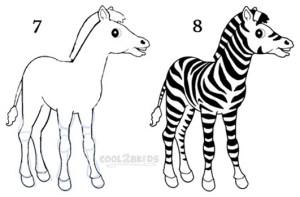 zebra draw step cool2bkids