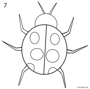 ladybug draw step cool2bkids