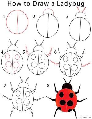 ladybug draw drawing step easy drawings bugs cool2bkids bug lady simple insects pencil doodle tutorial ladybird chalk painting tutorials coloring