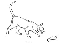 Free Printable Cat Coloring Pages For Kids | Cool2bKids