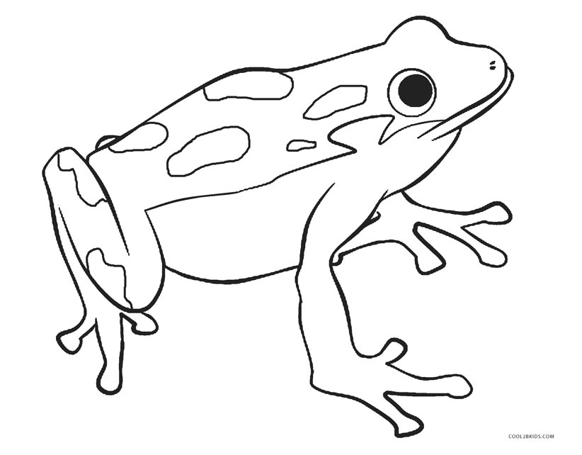 photograph regarding Printable Frog Pictures named Cost-free Printable Frog Coloring Webpages For Little ones Neat2bkids - Vudi