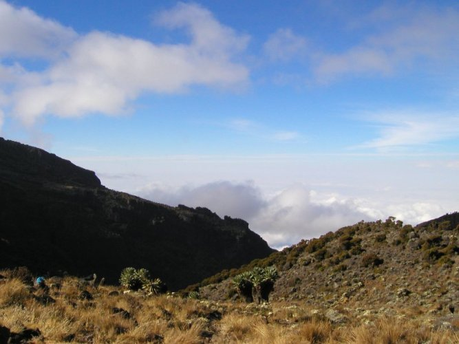 Kilimanjaro Machame Route Day 4