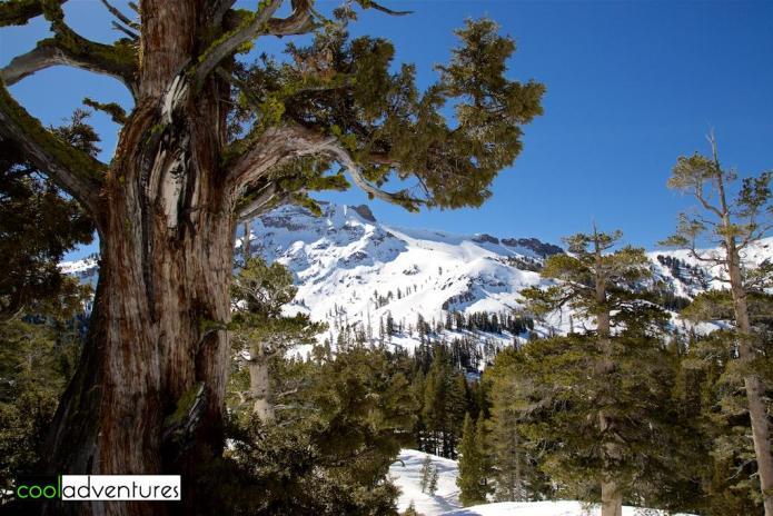 A bluebird day at Kirkwood MountainResort