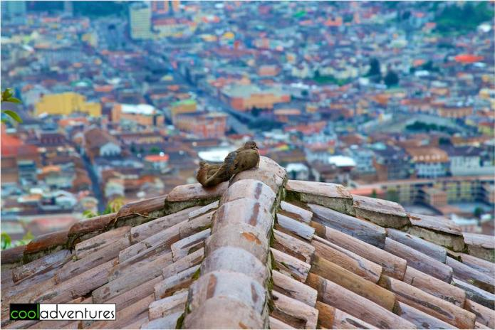 Bird's eye view of Quito, Ecuador