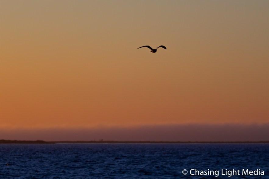 Sunrise at Rocky Point in Laguna San Ignacio, Mexico