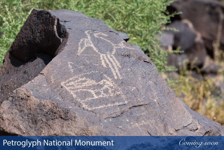 vPetroglyph National Monument photographs taken by Chasing Light Media