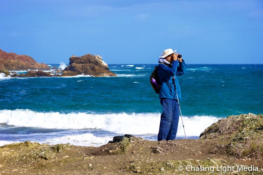Naturalist Paul Jones searching for fur seals