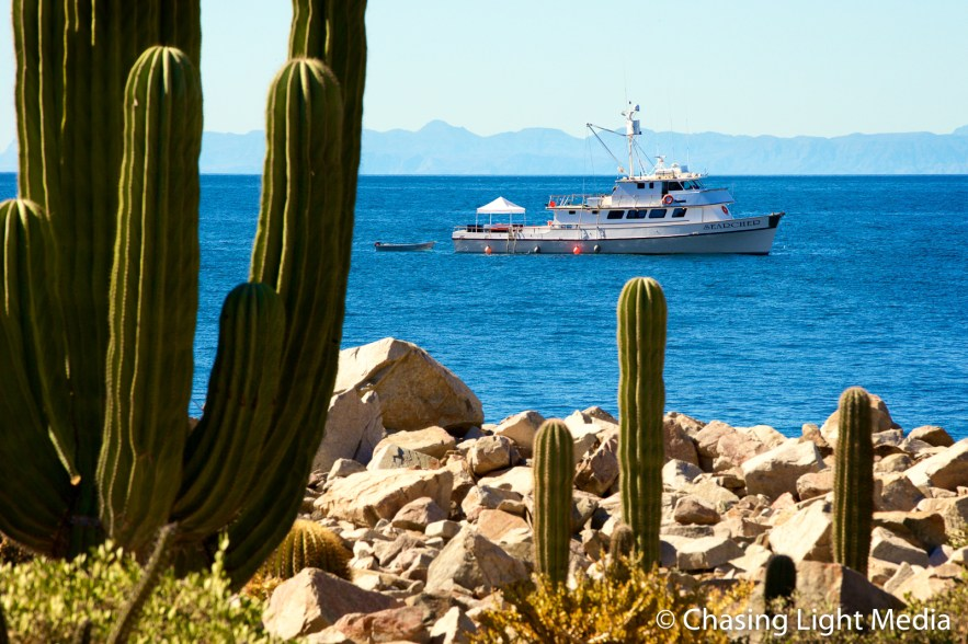 Searcher awaits return of hiking passengers, Isla Santa Catalina