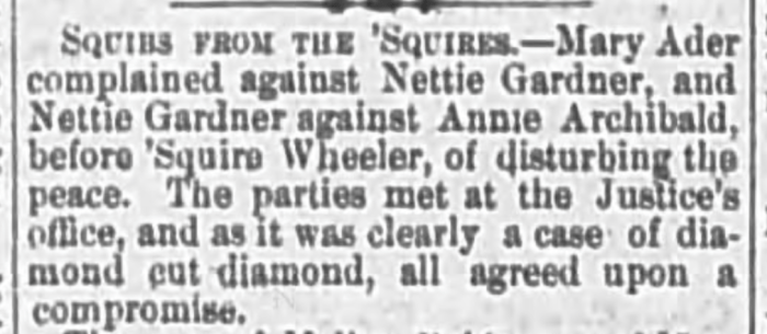 """""""Mary Ader Files Complaint,"""" news article, The Wheeling Daily Intelligencer (Wheeling, West Virginia), 20 June 1879, p. 4, col. 3."""