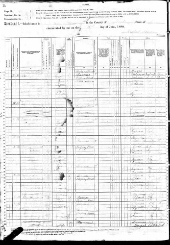 1880 U.S. census, Lincoln, Neosho County, Kansas, population schedule, enumeration district (ED) 169, sheet 231 D (stamped), dwelling 13, Elizabeth Hooper household.