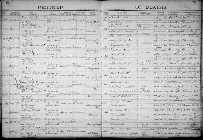 Bond County, Illinois, Register of Deaths, vol. B, p. 76, no. 1504, William H. Williams, 31 Dec 1905. Age: 73 years, 5 months. Widower. Wagon maker. Place of birth: Philadelphia, Pennsylvania. Bond County resident 48 years. Place of death: Greenville, Illinois. Burial: Montrose Cemetery, 1 Jan 1906.