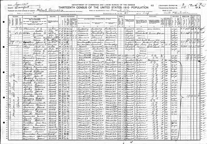 1910 U.S. census, Walnut, Crawford County, Kansas, population schedule, enumeration district (ED) 110, sheet 4A, dwelling 644, family 44, Solease A. Allen household.