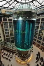 Radisson Hotel's AquaDom