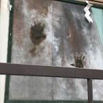 鬼の手形はどこだ! 盛岡三ツ石神社 さんさ踊り発祥の地 へ