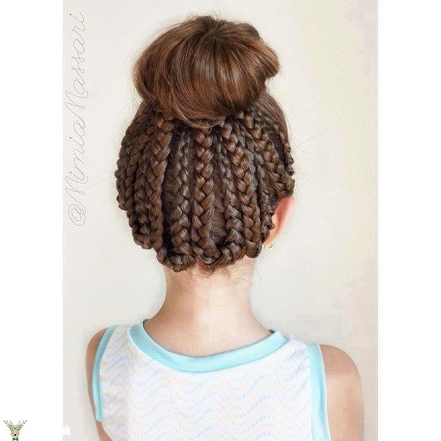 20 Fancy Little Girl Braids Hairstyle  Page 2 of 3
