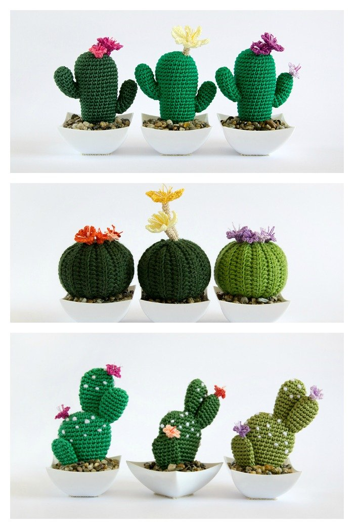 10 Desert Cactus Amigurumi Crochet Patterns  Look