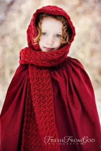 10+ Crochet Hooded Scarves and Cowls Patterns - Page 2 of 2
