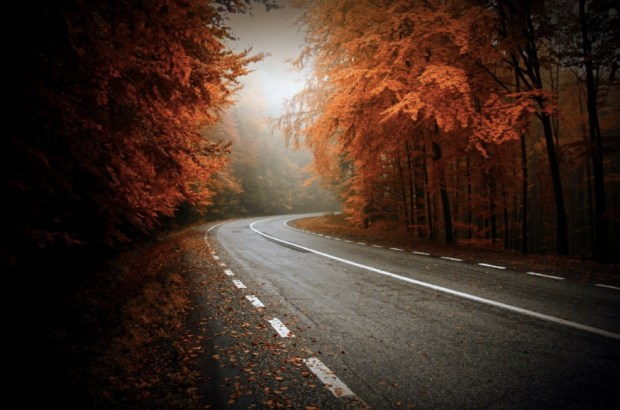 Beginning of Autumn in Transylvania