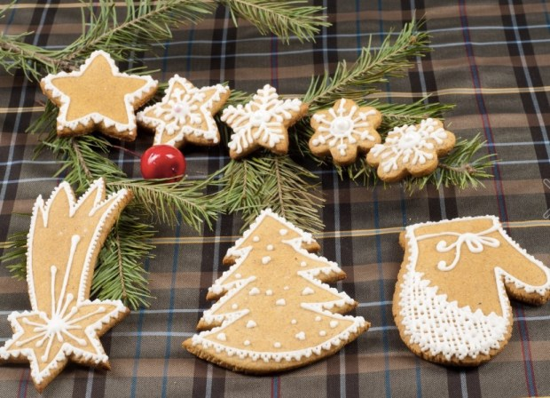 christmas-cookies-cloth-in-the-box-texture