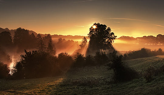 Morning idyll