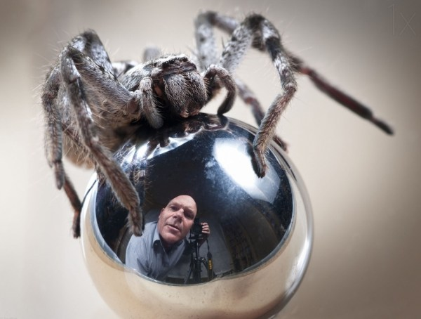 Self-Portrait with Spider