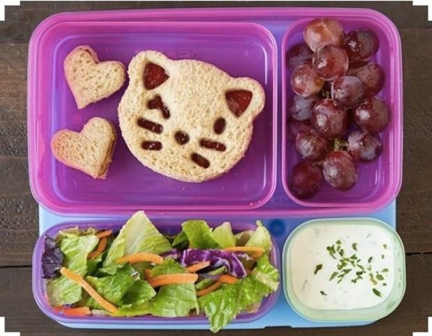 Amazing kitty lunch box