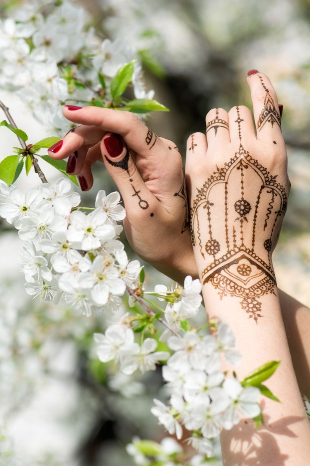 Mehndi in spring cherry blossom, Indian tradition