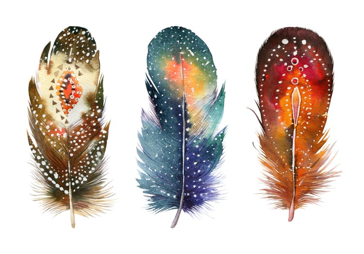 Hand drawn watercolor vibrant feather set