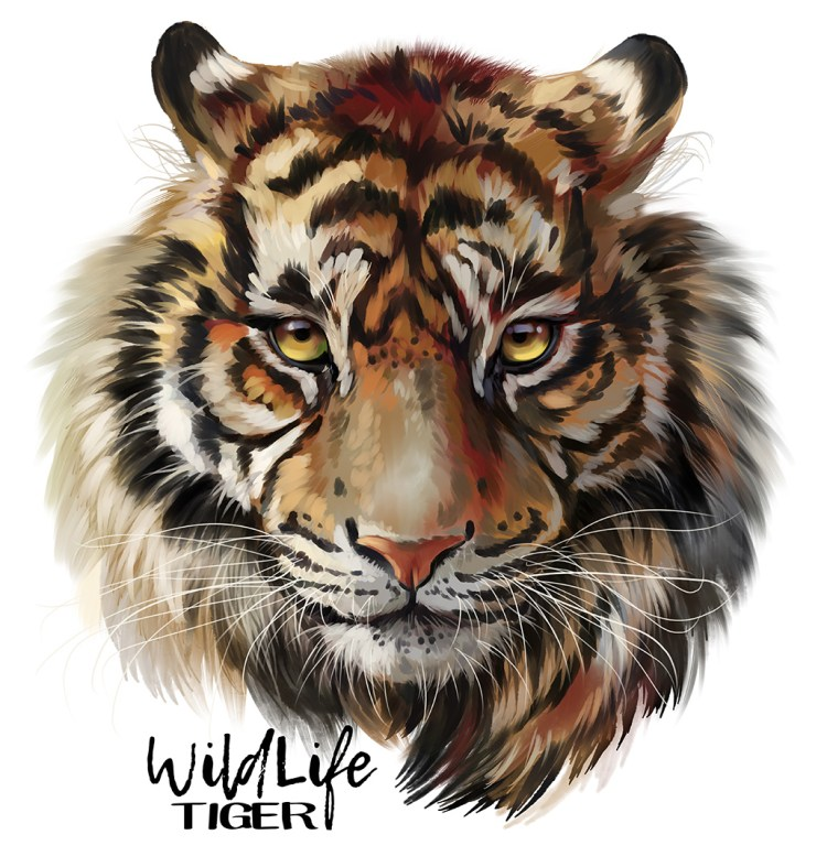 Tiger watercolor painting