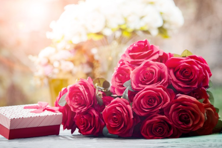 red roses flowers with valentine festival gift