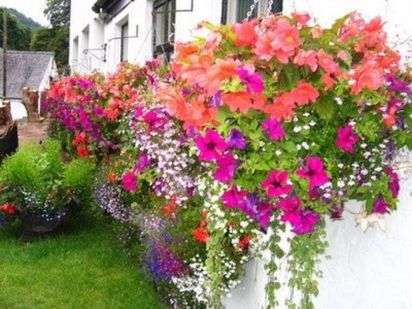 amazing diy garden planters