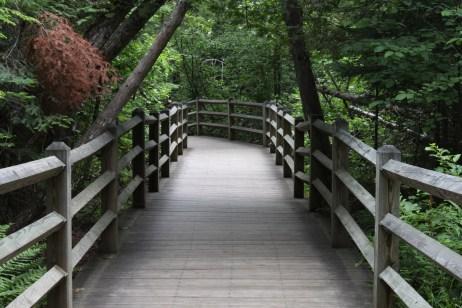 up-bridge