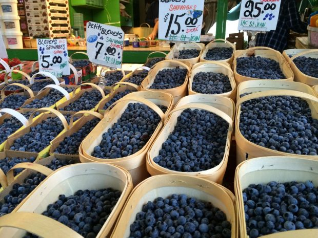 Jean Talon Market Montreal blueberries
