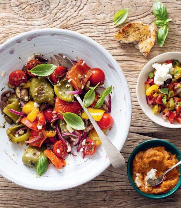 Tuscan-Style Salad with Buffalo Mozzarella