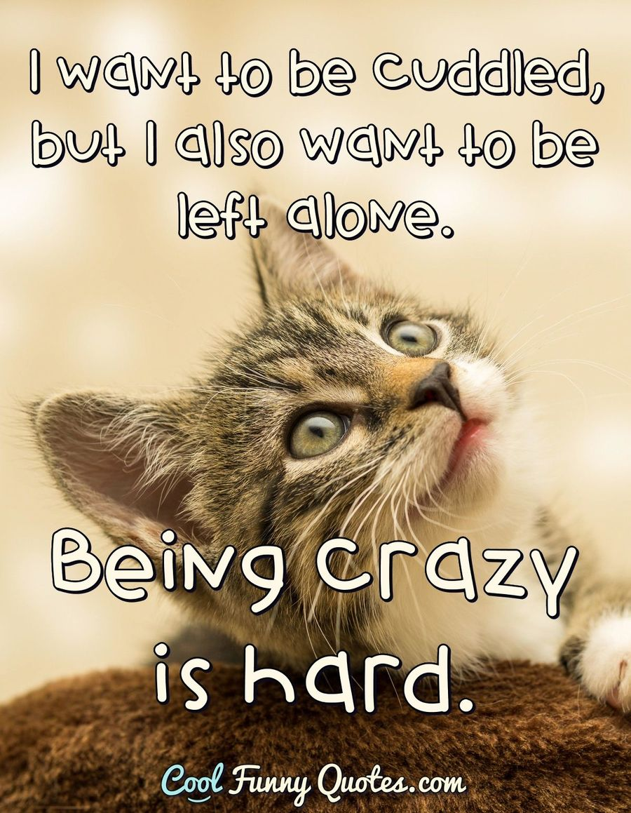 Quotes About Being Crazy : quotes, about, being, crazy, Cuddled,, Alone., Being, Crazy, Hard.