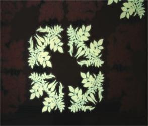 Loop Blumencontrast0