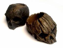 Driftwoor Skull1-1