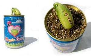 Word-Sprout-Magic-Bean