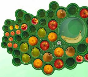 fruitree.jpg